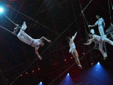 Continua lo spettacolo dei trapezisti, com'era noto a molti, Salvo Mallia ritorna in Forza Italia e si candida al Consiglio Comunale