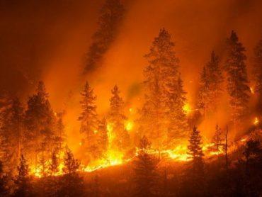 Pubblicata l'ordinanza per la prevenzione incendi