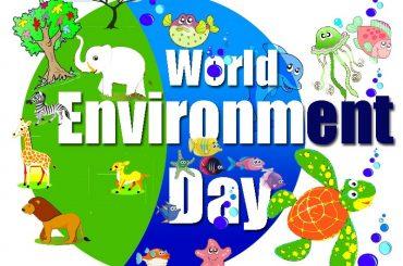 Giornata Mondiale dell'ambiente: Sicilia fanalino di coda per raccolta plastica