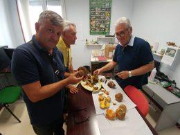 Anche in piena estate attivo l'Ispettorato Micologico del Dipartimento di Prevenzione ASP Ragusa