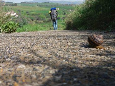 """Il Comune di Ragusa concede il Patrocinio al progetto di cammino nella storia dell'associazione """"Traversale Sicula"""""""