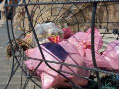 Capolavoro della comunicazione anche per la raccolta della plastica
