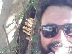 Marcello Occhipinti trova un fungo del carrubo di oltre 3 chili