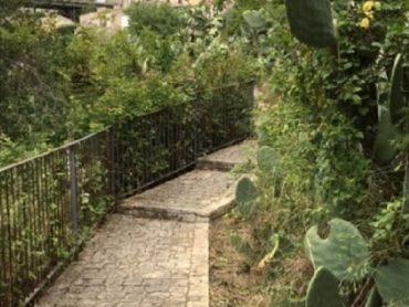 All'associazione CNGEI la manutenzione e la cura dell'area della panoramica del quartiere Carmine