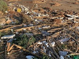 Il grillino Gurrieri sollecita interventi di pulizia nelle spiagge di Punta Braccetto