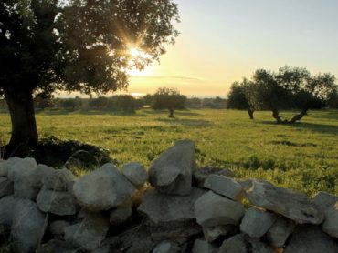 Prende forma l'Ecomuseo, perno del progetto culturale dell'amministrazione Cassì
