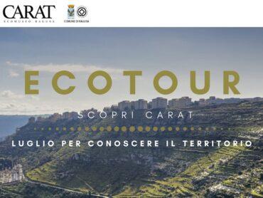 """Alla scoperta del nostro territorio con il progetto """"Ecotour"""""""