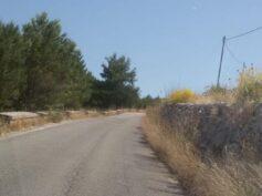 Cigli stradali e verde pubblico, manca l'adeguata programmazione o mancano i soldi ?