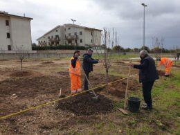 """Celebrata la terza edizione della Festa dell'Albero, è nato anche il """"Giardino della Vita"""""""