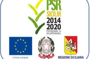 Fondi Psr, Scilla: «Tre milioni di euro per l'innovazione delle aziende agricole siciliane»